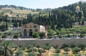 mount-of-olives-picture